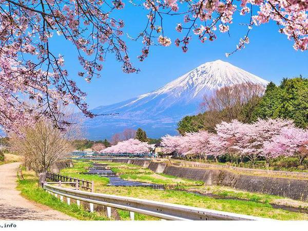 HÀ NỘI - TOKYO - NÚI PHÚ SỸ - NAGOYA - KYOTO - HÀ NỘI