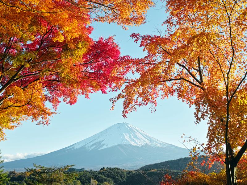 Du lịch Nhật Bản 11