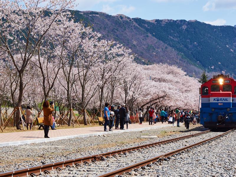 Du lịch Hàn Quốc 6