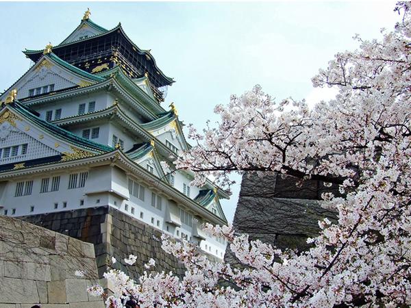 HÀ NỘI - TOKYO - NÚI PHÚ SĨ - NAGOYA - KYOTO - OSAKA - HÀ NỘI